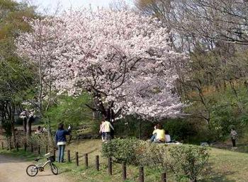 梶ヶ谷第一公園.JPG